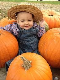 Pumpkin Picking Ct Best by Pick Your Own Pumpkin Patch Slideshow Devon Point Farm
