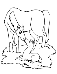 28 Collection Of Baby Horse Coloring Pages