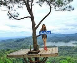 Kalibiru National Park Jogja Tour Driver Yogyakarta Tours