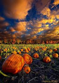 Best Pumpkin Patches Near Milwaukee by 500 Best Horizons 1 By Phil Koch Images On Pinterest Milwaukee
