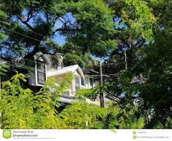 100 Sydney Terrace House Dormer Windows On An Inner City Stock Photo