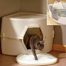 best cat litter boxes best cat litter boxes roundup apartment therapy