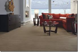 what is the best carpet for a living room wholesale flooring