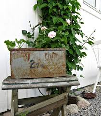 Planter In An Old Tin Box
