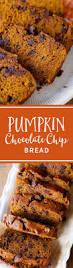 Gluten Free Bisquick Pumpkin Bread Recipe by Pumpkin Chocolate Chip Bread Recipe Pumpkin Bread Favorite