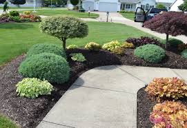 Garden Design: Garden Design With Dwarf Nandina Bush DREAM HOME ...