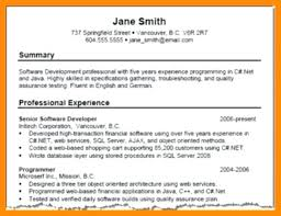 Professional Resume Summary Sample Examples For Throughout A Exa