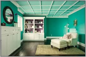 Fiberglass Drop Ceiling Tiles 2x2 by Fiberglass Drop Ceiling Tiles Home Depot Tiles Home Decorating