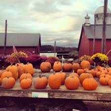 Pumpkin Patch Avon Ct by 31 Best Simsbury Ct Images On Pinterest Simsbury Connecticut