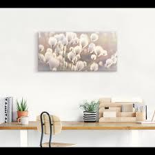 artland wandbild wollgraszauber im moor gräser 1 st in vielen grössen produktarten alubild outdoorbild für den aussenbereich