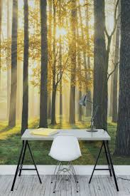 Wall Mural Decals Nature by Best 25 Forest Wallpaper Ideas On Pinterest Forest Bedroom