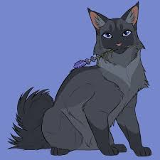warrior cat 516 best warriors images on warrior cats warriors and