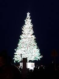 Kanemori Red Brick Warehouse Christmas Tree Near Wharf