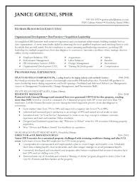 Great Resume Templates 2017 Inspirational Professional Example Standard