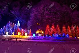 Griswold Christmas Tree Scene by Christmas Lights On Christmas Lights Decoration