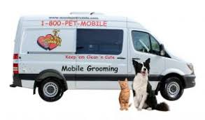 mobile cat grooming aussie pet mobile triangle mobile grooming for cats dogs