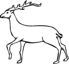 Free Deer Coloring Page