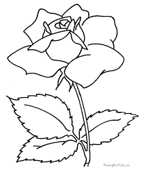 Flower Coloring Book Page Of A Rose