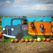 Kula Pumpkin Patch by Annual Trip To The Pumpkin Patch Kahoohanohano Family Adventures