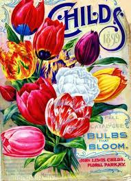 139 best vintage flowers images on vintage seed