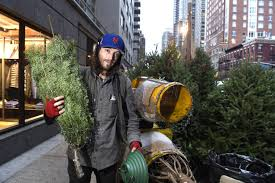 Nyc Christmas Tree Disposal by Meet The Wacky Characters Who Sell Christmas Trees In Nyc New