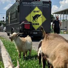 Steaming Goat Food Truck - Home | Facebook Blackstone Brewery On Twitter Visit Our Food Truck Bstone Bus The Produce Truck Is Now Rolling In Davidson County Second Harvest Kosher Food Opens In Nashville Tn At Vanderbilt University Friday Deg Thai Nfta Members Association Restaurants Wheels 16 Trucks You Should Try This Summer Steam 2017 Open House Events Franklinis Retro Sno Tshirt Nashvilles Original Shaved Ice Bao Down Buy A Bouquet From Amelias Flower Offline Mac Attack Roaming Hunger 10 Most Popular Trucks America