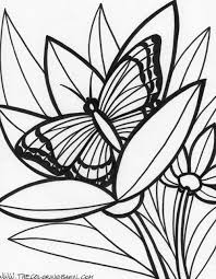 Jungle Coloring Pages Of Animals Rainforest And