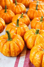 Keep Pumpkins From Rotting On Vine by How To Preserve Pumpkins For Decorating Creative Cain Cabin