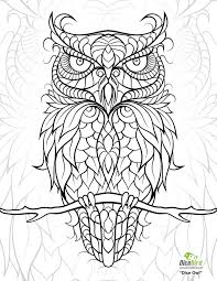 Coloring Pages Owl For Adults 1000 Ideas About On