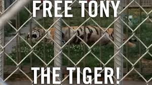 Tony The Tiger - YouTube