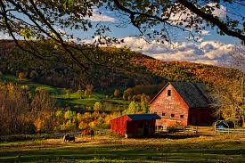 A New England Barn In Fall Foliage. Sigh... | Farms, Barns And ... Red Barn And White Picket Fence In Southern New Hampshire Bishop Farm Beautiful Farmland Photography M Buchholz Old Barn Spring Stock Photo 627834638 Shutterstock A Wedding England Photographer Kelsey Tuttles Wikipedia Nh Farms For Sale Barns Oil Pating By Artist Jean Jack Sunninghill An Historic Equestrian Estate Southern Connected Farms Madisonbarns Silo At A North Hampton