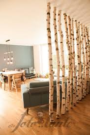 wallwall wallwall birch trunks wood thephototante