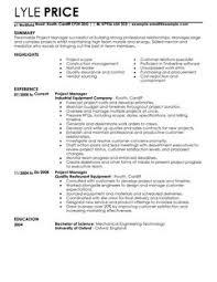CV Template For Manager Management