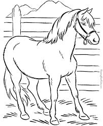 25 Unique Horse Coloring Pages Ideas On Pinterest