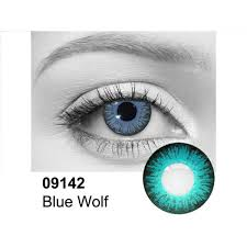 Blue Wolf Contact 09142 Lenses Halloween Color Lenses Online Or In