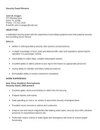 Professional Security Guard Resume