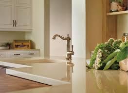 Delta Trinsic Kitchen Faucet Champagne Bronze by Trinsic Kitchen Collection Faucets Pot Fillers And Faucet