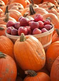 Pumpkin Picking Ridge Ny by Millstadt Family Fun Farm Reopens Fall 2017 U2014 Eckert U0027s Family