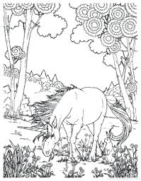 Difficult And Hard Coloring Page Of Realistic Unicorn Pictures Animals For Preschoolers Pages Full Size