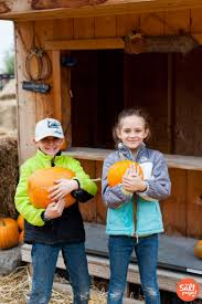 Pumpkin Patch Utah by Hee Haw Farms Pumpkin Patch The Salt Project Things To Do In