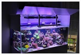 eclairage led pour aquarium eau de mer re led diy lumière et éclairage cap récifal