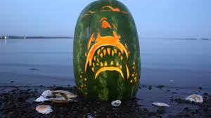 Funny Pumpkin Carvings Youtube by Jaws Watermelon Carving Youtube