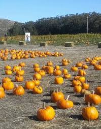 Half Moon Bay Pumpkin Patch Ca map of half moon bay pumpkin patches california in fall