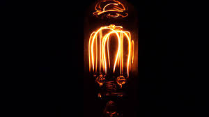 2 filament custom made incandescent light bulb preview made by