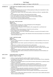 Download Case Care Manager Resume Sample As Image File