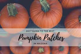 Tucson Pumpkin Patch by 2017 Guide To The Best Pumpkin Patches In Arizona
