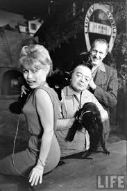 Universal Halloween Horror Nights Auditions by 77 Best Peter Lorre Vincent Price And Basil Rathbone Images On