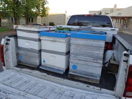 The Basics Of Moving Hives | Bee Informed Partnership