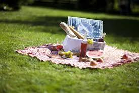 urlaub zu hause schöne picknick plätze in deutschland