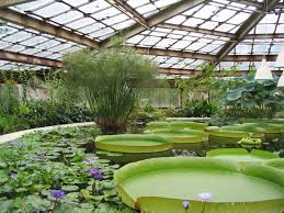 100 Define Glass House Greenhouse Wikipedia